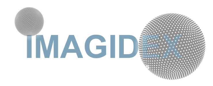 Imagidex
